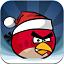 angry_birds_seasons_icon