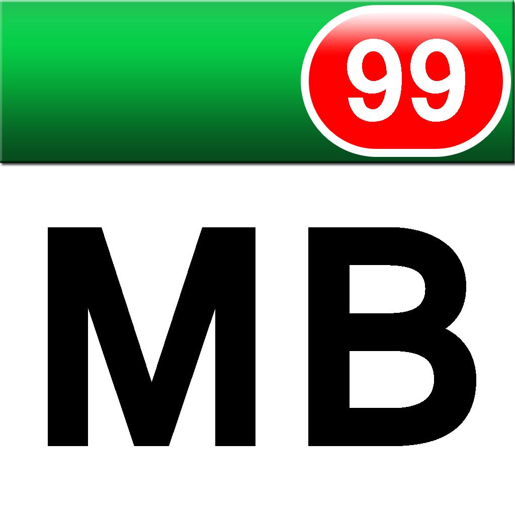 Megabytes Icon